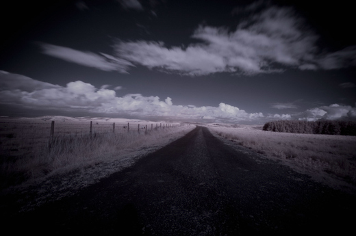 Road_less_travelled_by_underaglassbell_o